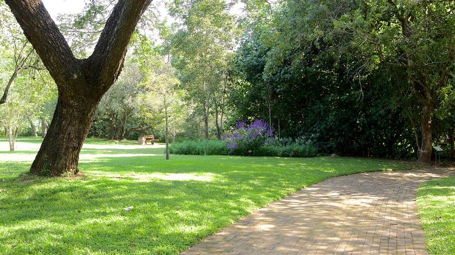 Jardin botanique national de lowveld les activit s for Au jardin les amis singapore botanic gardens