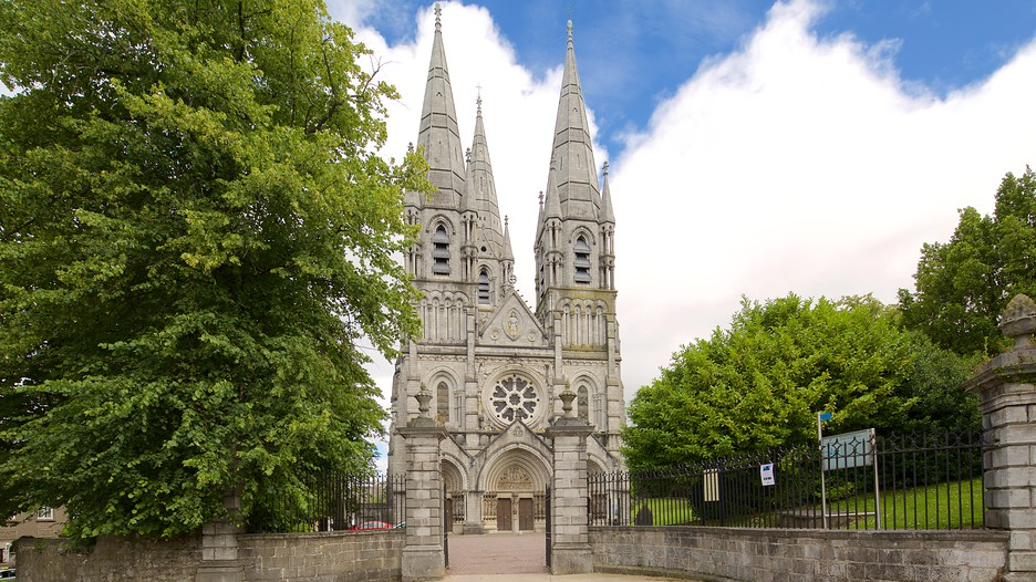 Saint Fin Barre's Cathedral. Image Source: https://www.expedia.ie