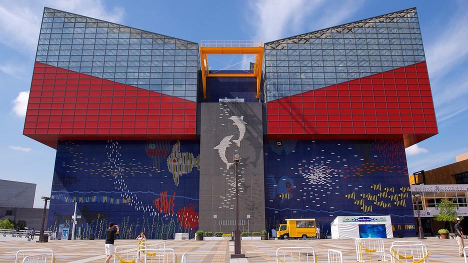 Osaka Aquarium Kaiyukan in Osaka,  Expedia
