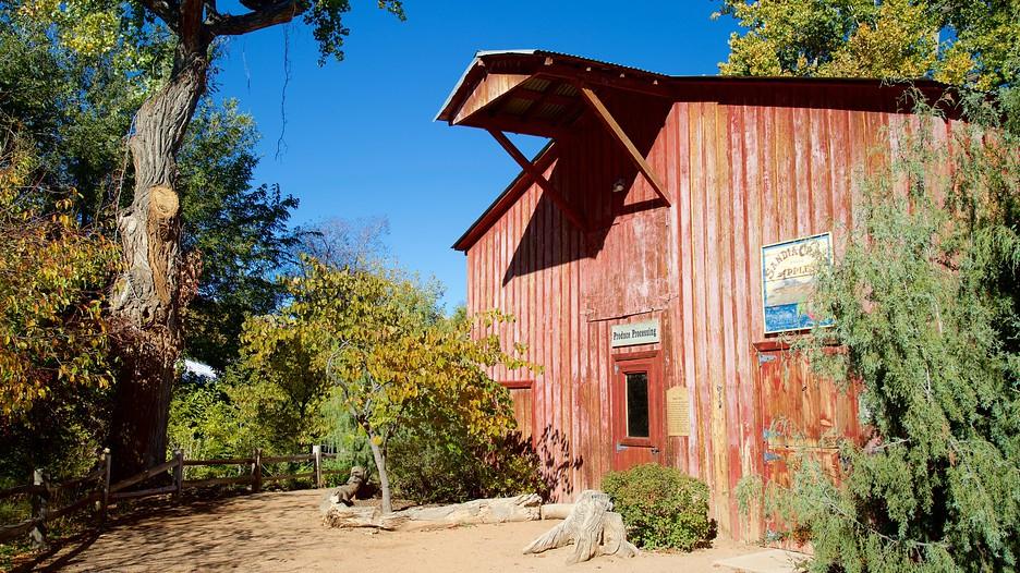 ABQ BioPark Botanic Garden   Albuquerque   Tourism Media