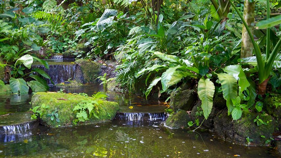 Spice Farm Penang Tropical Spice Garden Penang