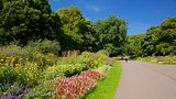 Duthie Park Winter Gardens - Aberdeen - Tourism Media
