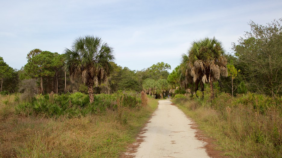 Boyd Hill Nature Park in St. Petersburg, Florida | Expedia
