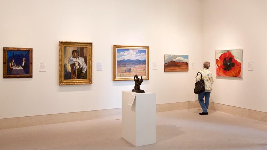 Museum Of Fine Arts In St Petersburg Florida Expedia