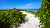 Northwest Point National Park - Providenciales