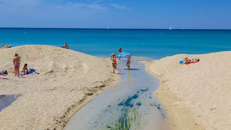 The best palma de mallorca vacation packages 2017 save up - Muebles baratos palma de mallorca ...
