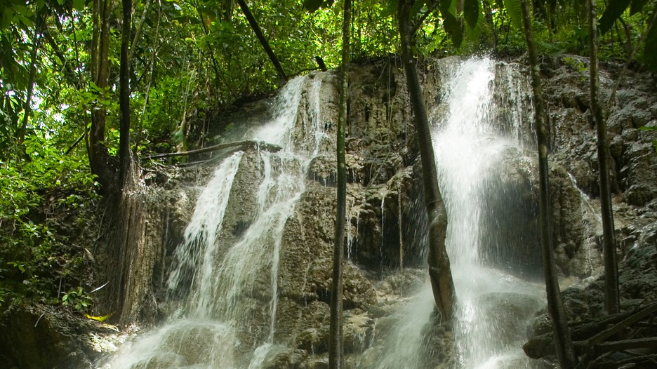 Somerset falls in port antonio - Holiday homes in somerset with swimming pool ...