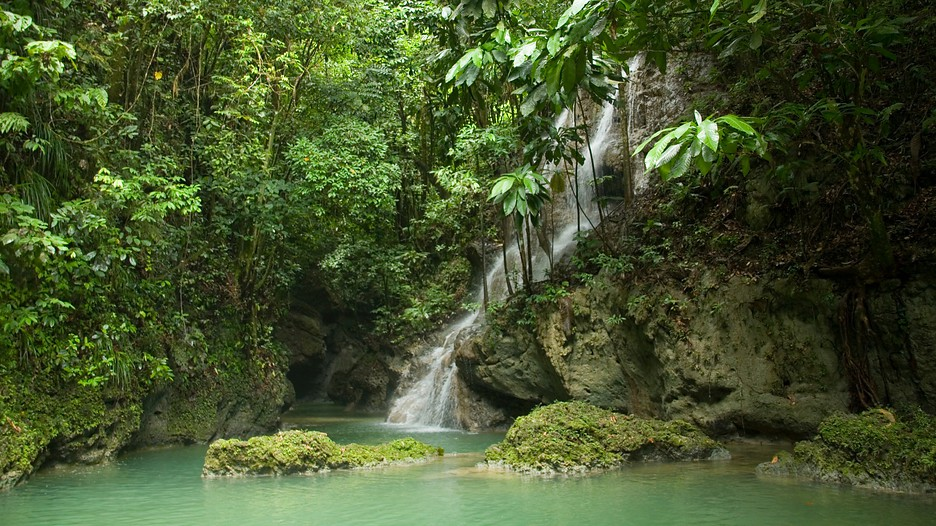 Somerset falls in port antonio expedia - Holiday homes in somerset with swimming pool ...