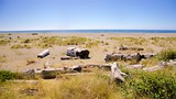 Gold Bluffs Beach - Eureka - Tourism Media