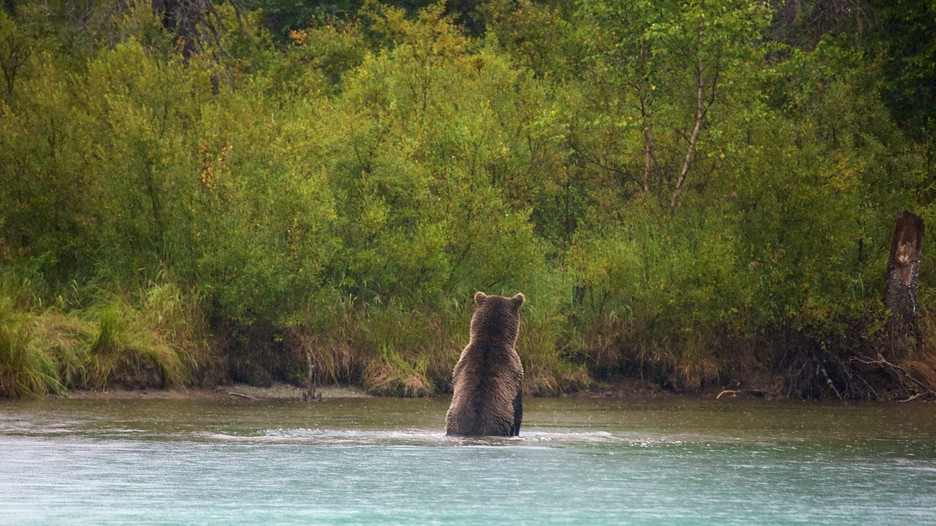 how to get to lake clark national park