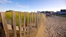 Herring Cove Beach - Provincetown