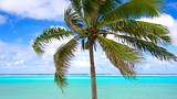 Tikioki Marine Sanctuary - Rarotonga - Tourism Media