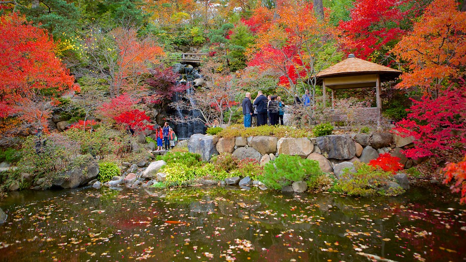 Anderson Japanese Gardens In Rockford Illinois