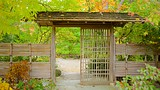 Anderson Japanese Gardens - Rockford - Tourism Media