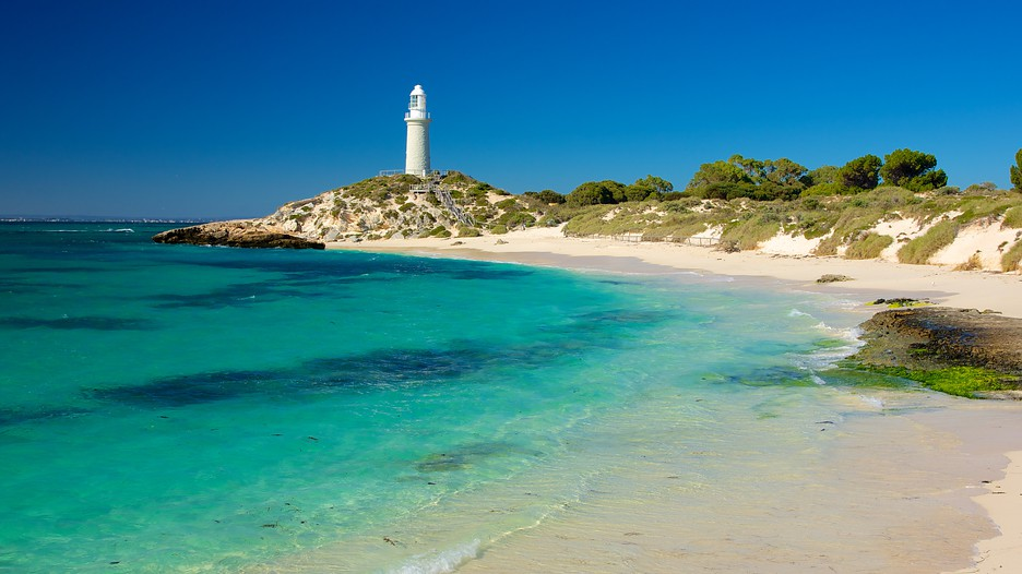 Rottnest Island Vacations: Package amp; Save up to $603 in 2017