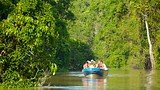 Kinabatangan River - Sandakan - Tourism Media
