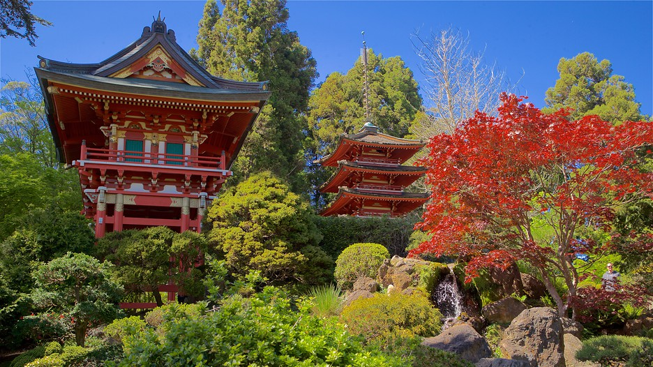 Japanese tea garden in san francisco california - Japanese tea garden san francisco ...