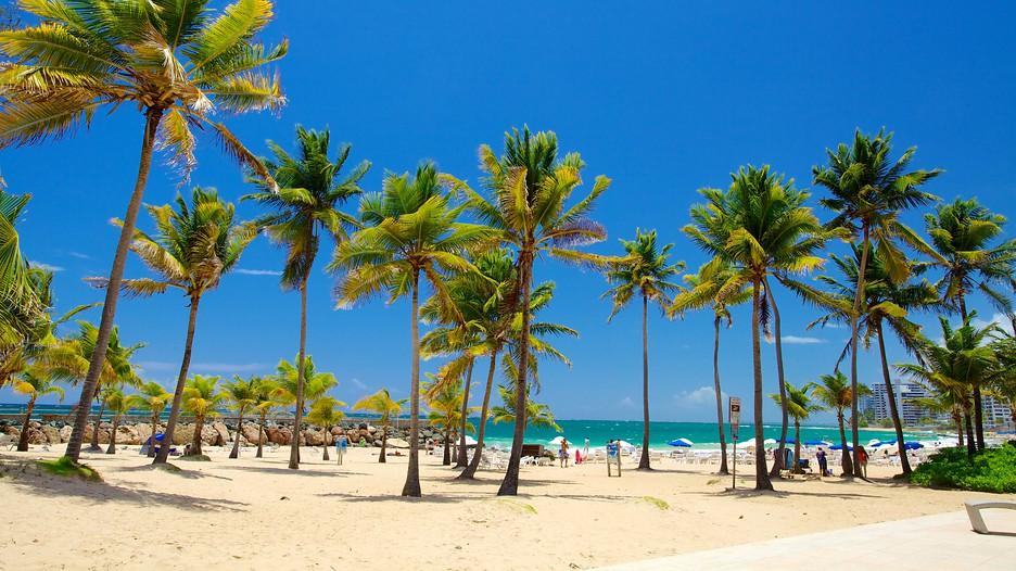 Images of puerto rico la playa del condado - Viajes Baratos A Isla De Puerto Rico Vuelo Mas Hotel