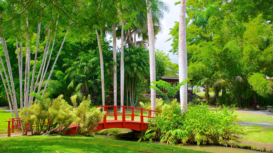 Jardin botanico em san juan porto rico for O jardins d eglantine