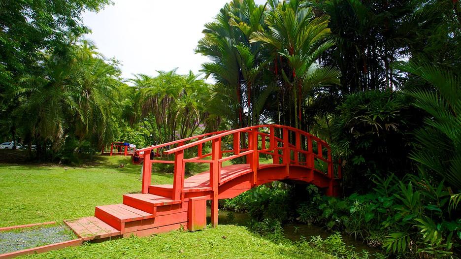 Jardin botanico in san juan expedia for O jardins d eglantine