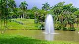 Jardin botanico in san juan expedia for Jardin botanico san felipe