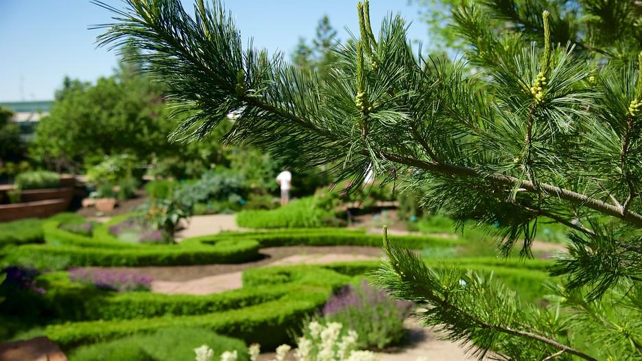 Red Butte Garden And Arboretum In Salt Lake City Utah