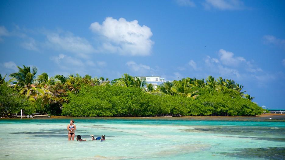 Expedia San Pedro Hotels Belize