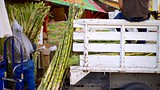 Hidalgo Market - Baja California Norte - Tourism Media