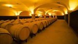 L.A. Cetto Wine Cellar - Mexico - Tourism Media