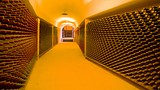 L.A. Cetto Wine Cellar - Mexiko und Lateinamerika - Tourism Media