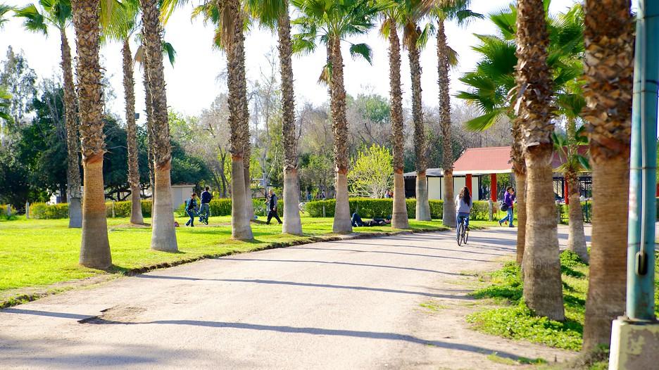Parque morelos in tijuana baja california norte expedia for Parques con jardines