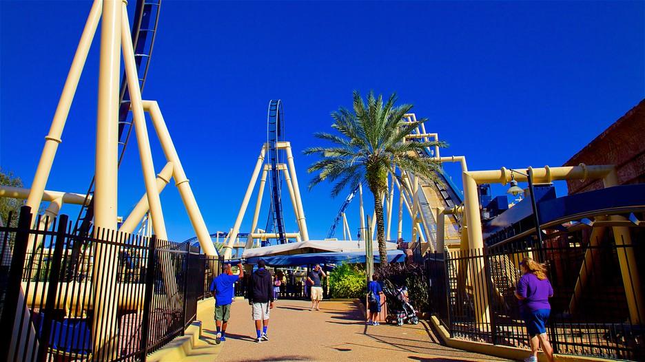 Busch Gardens In Tampa Florida Expedia Ca