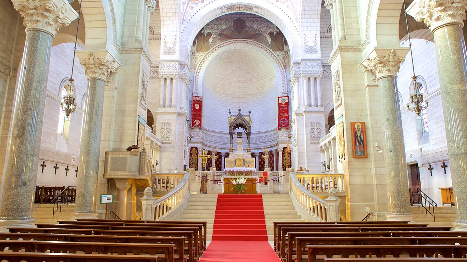 Saint Martin Basilica In Tours Expedia