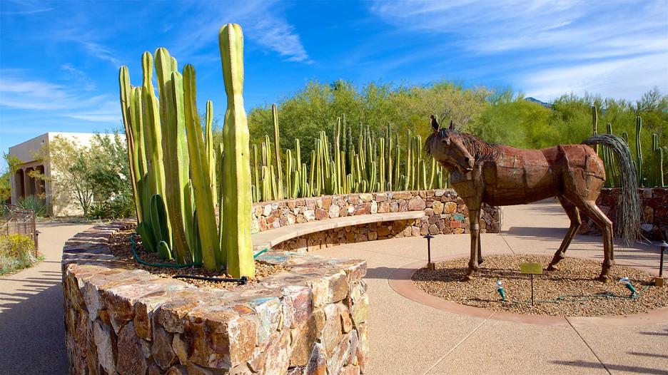 Tohono Chul Park In Tucson Arizona Expedia