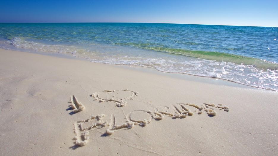 Henderson beach state park fort walton beach tourism media