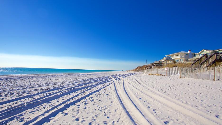 Grayton Beach State Park In Fort Walton Beach Florida