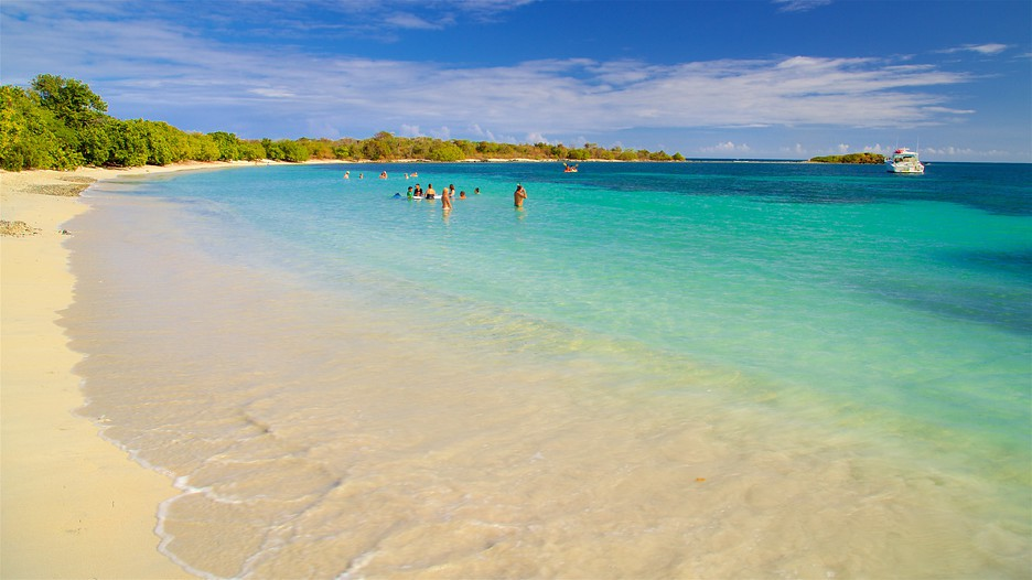 meet vieques county singles Hunt for vieques county, pr apartments for rent on realtorcom® discover vieques county apartment rental listings, vivid photos and more today.