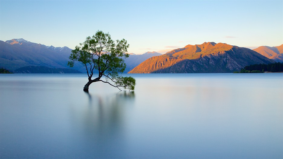 Lake Wanaka Punti Di Interesse A Wanaka Con Expedia It