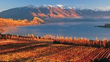 Wanaka - Tourism New Zealand/David Wall