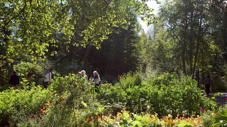 Alaska Botanical Garden Anchorage Alaska Attraction