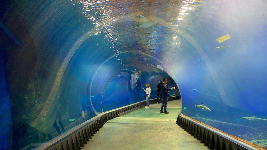 Wroclaw Zoo - Wroclaw - Tourism Media