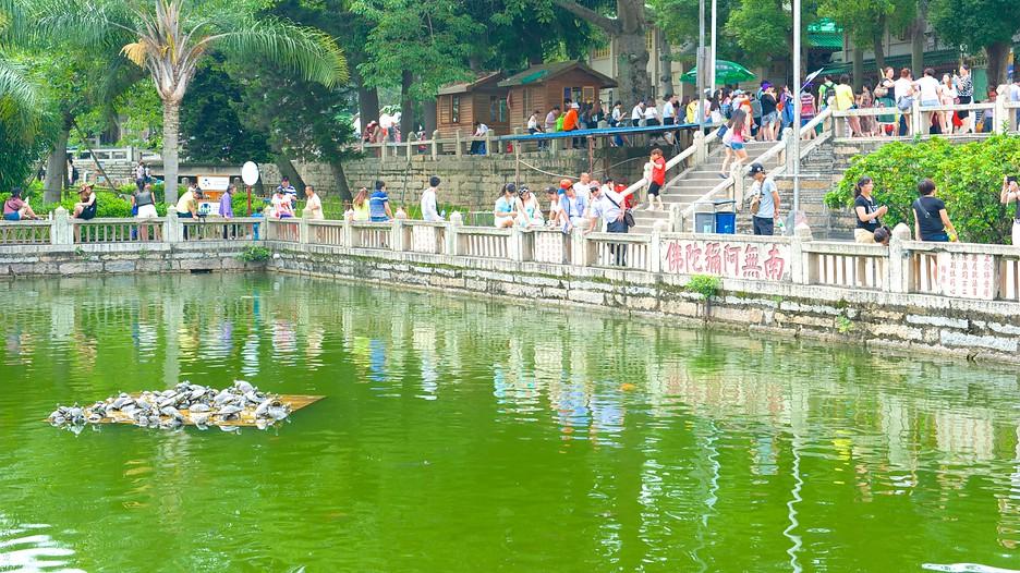 Tìm hiểu về Miếu Nam Phổ Độ cùng vé máy bay đi Hạ Môn Nanputuo-Temple-71327