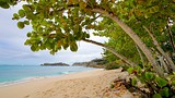 Galley Bay - Antigua and Barbuda - Tourism Media