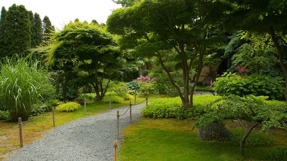 Kasugai gardens in kelowna british columbia for Koi fish pond kelowna