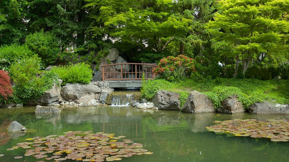 Kasugai gardens in kelowna british columbia expedia for Koi pond kelowna