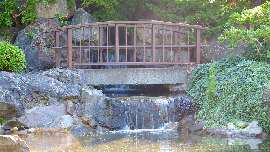 Kasugai gardens in kelowna british columbia for Koi pond kelowna