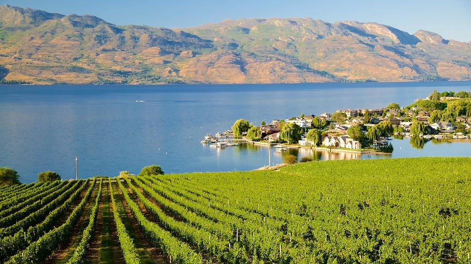 Quails 39 gate estate winery punti di interesse a okanagan for Affitti di cabina okanagan bc