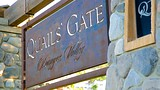 Quails' Gate Estate Winery - Kelowna - Tourism Media