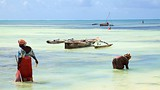 Jambiani Beach - Tanzania - Tourism Media
