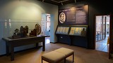 Hastings Museum and Art Gallery - Hastings - Tourism Media